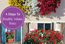 DIY Gardening Projects / A variety of Do It Yourself (DIY) Projects you can do in your garden or home.