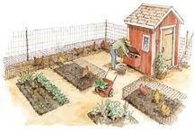 Mini Farm / by Claire Burbank