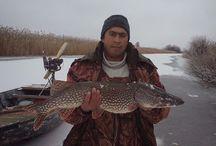 Ловись рыбка... / Рыбалка