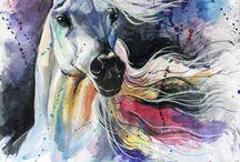 Veshantis horse board