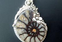 Ammonite / Ammoniet