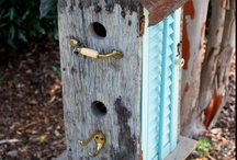 Birds and Bird Houses / by Marcia Merritt