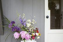 Knock Knock / by Heidi Magel-Wigtil