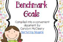 Benchmark Learning