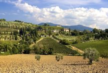 Tuscan Hideaway Apartments / The Val di Merse, nestling amid the Sienese hills, is a wonderfully undiscovered corner of western Tuscany, midway between the popular Chianti region and the lesser-known Maremma. The hilly inland terrain is studded with ancient farmhouses and crisscrossed by quiet, winding roads, once populated only by migrant charcoal burners and wandering shepherds, tending their flocks of sheep. http://po.st/gJWmcg