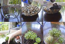 sklenené nádoby