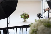 STUDIO / Behind the scenes at our Wild Wood London studio which is based in Wandsworth
