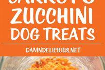 food for dog