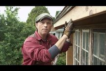 Historic Seattle Home Restoration Expert