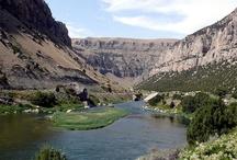 Wyoming 2014 / by Kiley McNemar