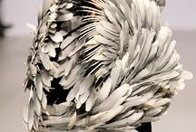 Feather Couture