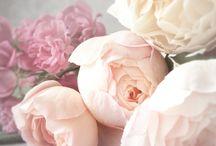 perfetto tono di rosa! questo è il bouquet!! :)