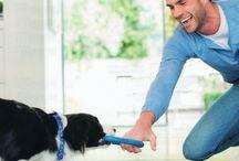 Hondenpenning.net