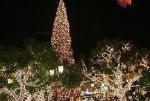 SILENT NIGHT (Christmas lights and candlelight)