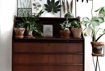 Home Sweet Home / Interiors incorporating elements of nature in beautiful ways