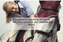 le cheval ma passion