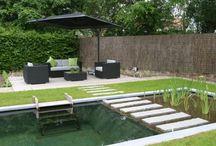 Wasser Garten