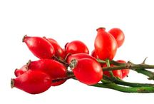 Recipes & Benefits Of Rosehip Oil
