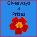 blog giveaway linkys / by Martha Avans