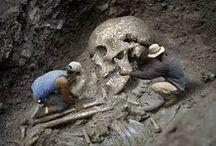 Giants skeletons