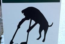 Irresponsible dog owners. / by Angela Crawford