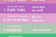Corea frasi studio