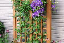 Garden screens