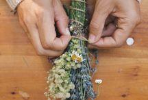 detalles y centros de flores
