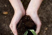 plantin' stuff