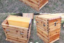 養蜂  Beekeeping