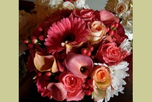 Peach & Coral Weddings