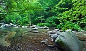 Japan Outdoors / Natural scenes in Japan