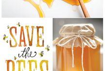 Beekeeping & Honey / by Jo Ver Mulm