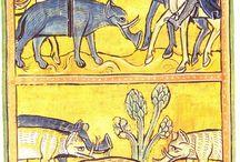 iluminacje średniowieczne