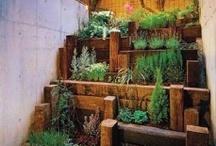 Green / Gardening, recycling, earth conscious.