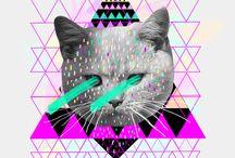 Cat - etc