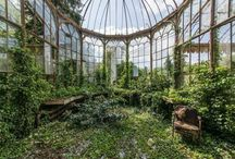 beautiful green house