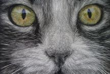 Meow! / Love those furry little critters! / by Leslie Dawson