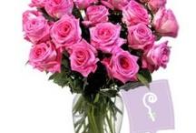 24 Pink Roses in a Vase