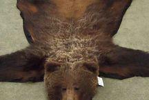medve szőnyeg valósághű