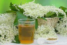 Tee und Gesundheit :-)