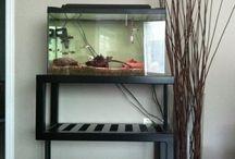 aquarium steel stand