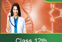 Extraminds XII Class / 12th Class Classroom Lecturers
