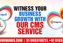 Innovative CMS Service