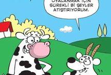 Karikatür&comic