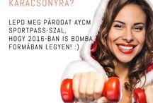AYCM 2016 Ajánlat