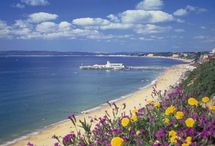 Where I live / Pictures of Bournemouth, Christchurch, New Forest