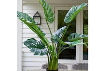 Rivièra Maison goes Green - Inspiration