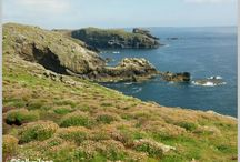 Walks and More in Pembrokeshire / Walks, pubs, eateries and more from my travels in Pembrokeshire