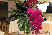 arranjos grd flores